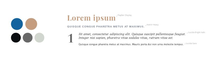 Sistema de colores y tipografías