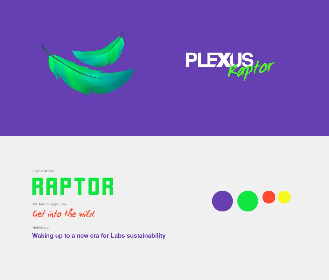 Diseño de logotipo e apertura del sistema gráfico
